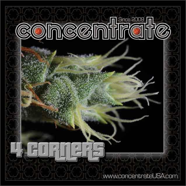 conc-4crnrs-live-2-3-rgb.jpg