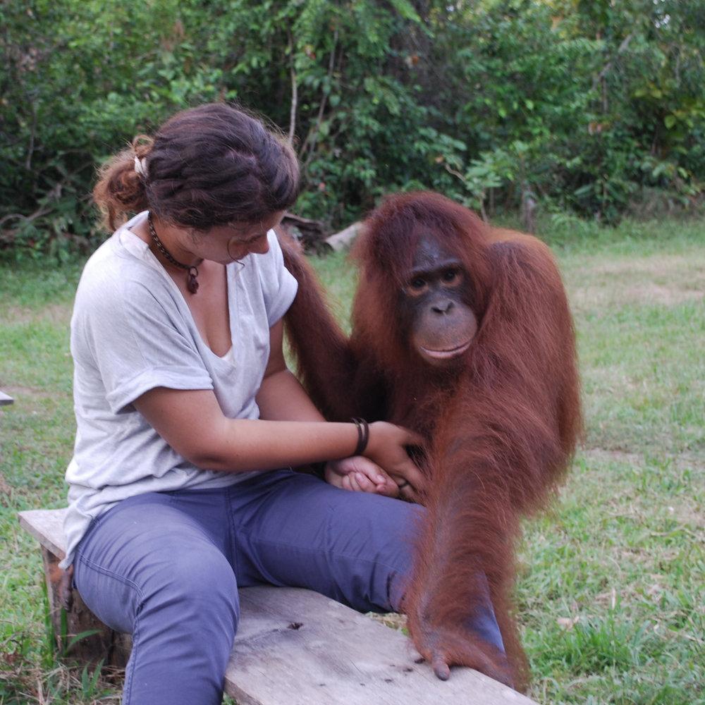 Loren pictured here with Lydia, a teenage female orangutan.