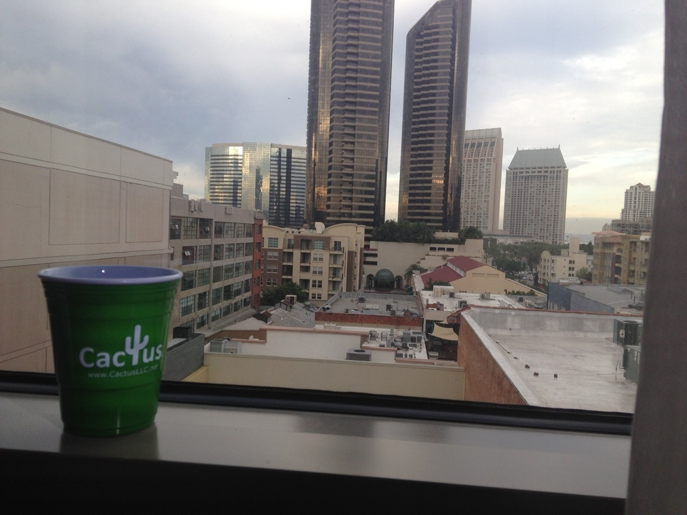 San Diego - Skyline - Mark Schroeder.jpg