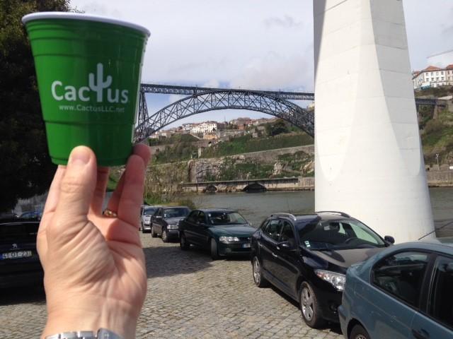 cactus cup portugal.jpg