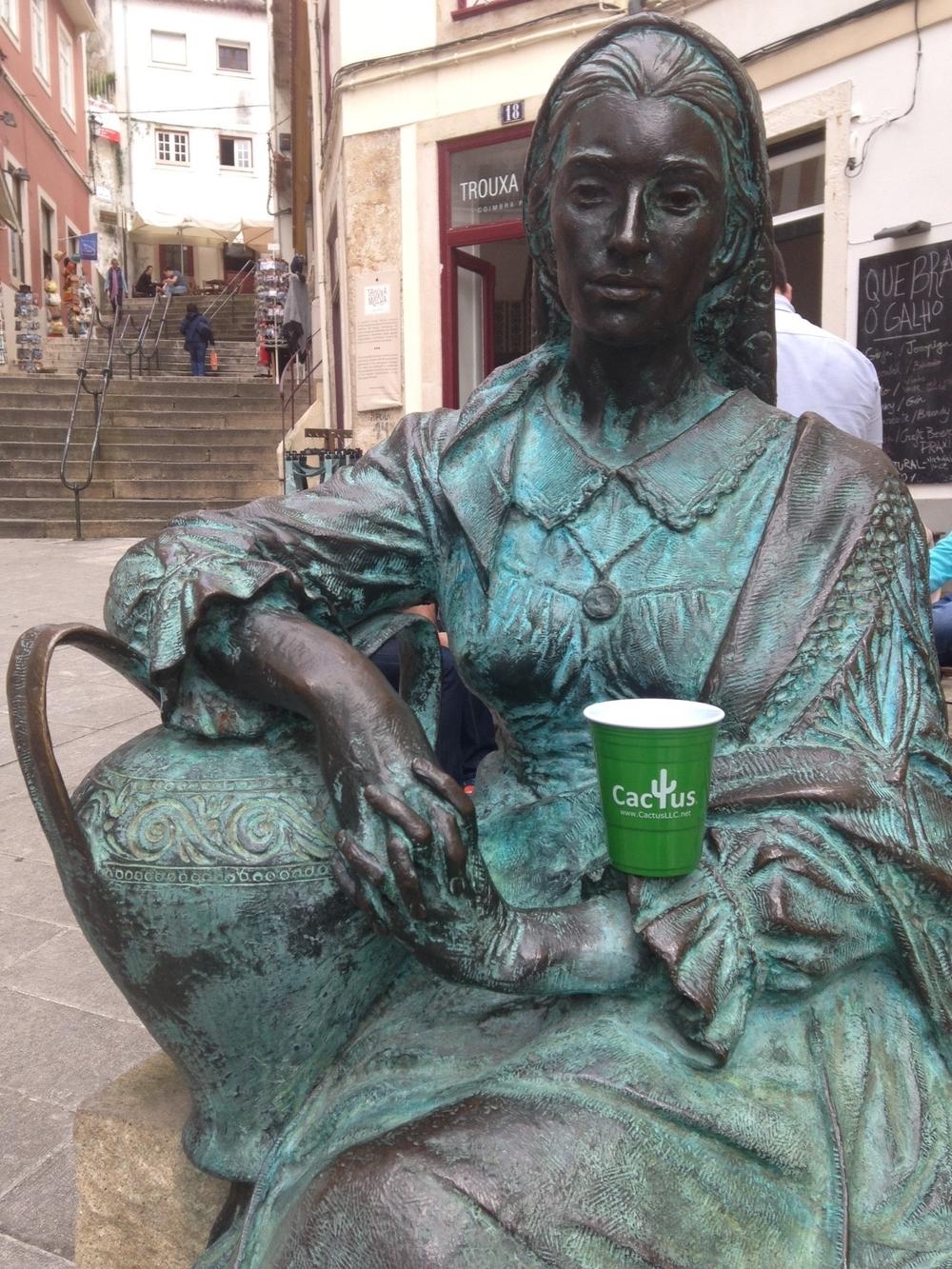 Cactus cup Coimbra, Portugal.jpg