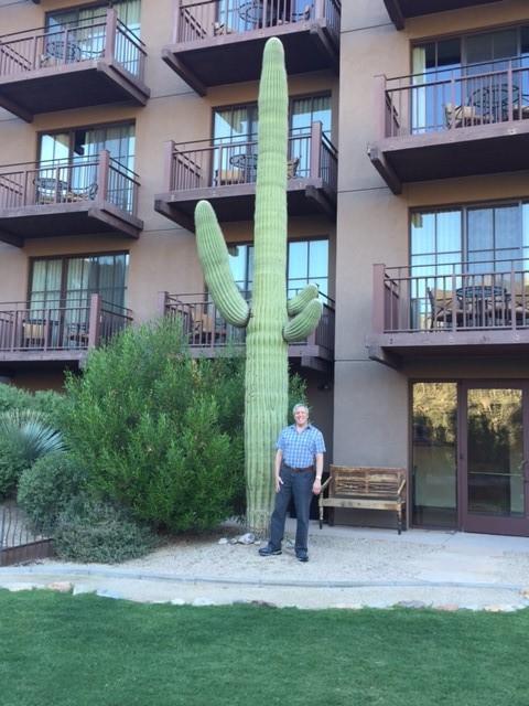 50 ft. Cactus.jpg