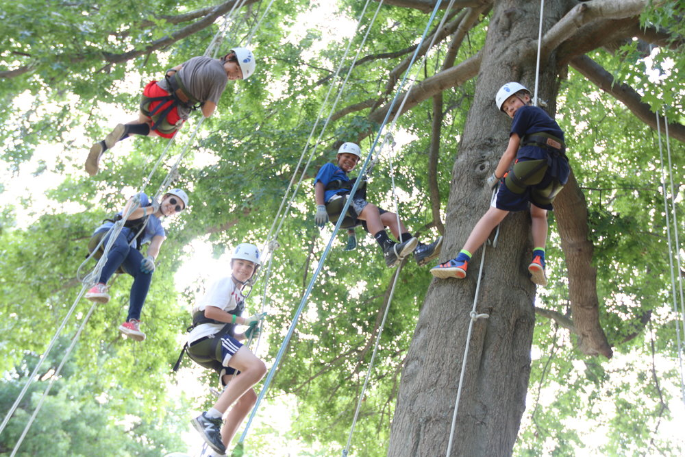 Adventure Tree Climbing in front of the the dining hall