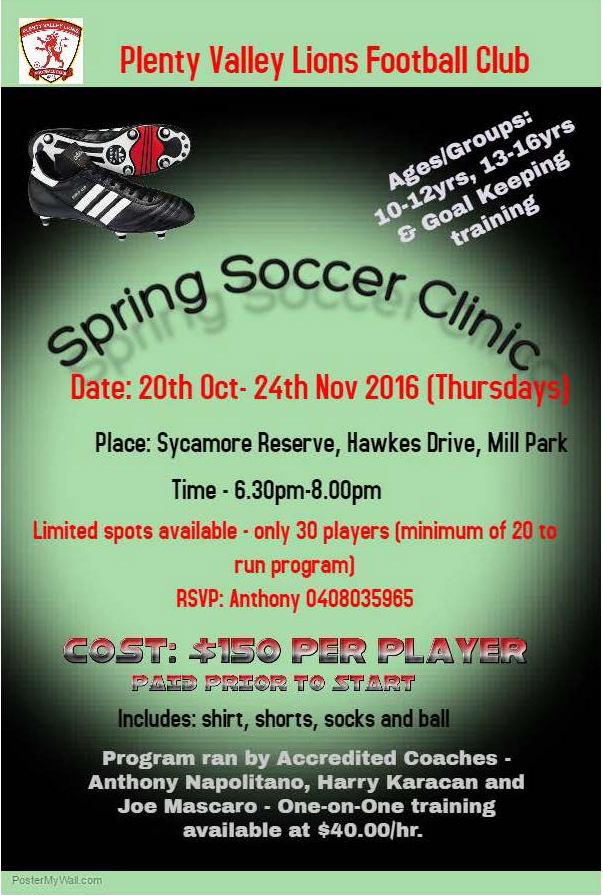 Spring clinic flyer