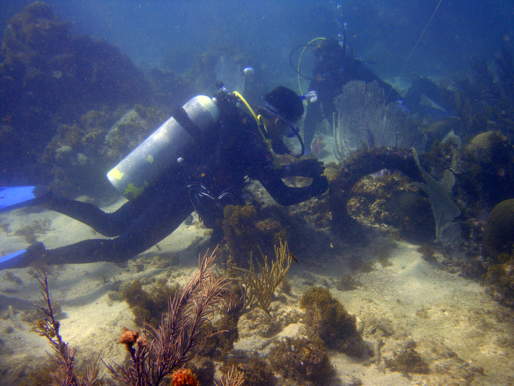 Documenting one of the anchors on the Island Wreck in Monte Cristi Bay