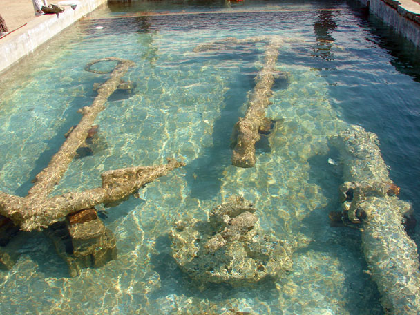 Anchors and cannons from The Tile Wreck in conservation tanks