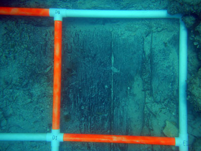 Survey square D0 after hand fanning showing the hull planking.