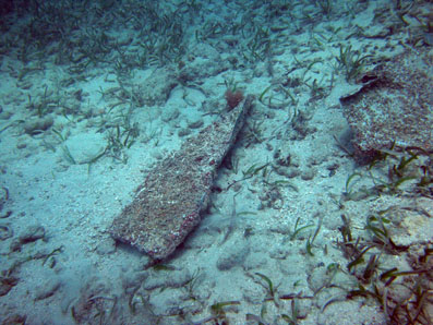 A piece of lead sheeting, with coral growth found on the wreck site.