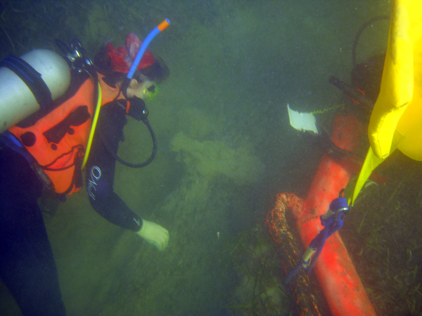 Archaeologist Nicky Bose uncovering the second piece of  The Tile Wreck's  rudder, this time to seaward of the main hull section