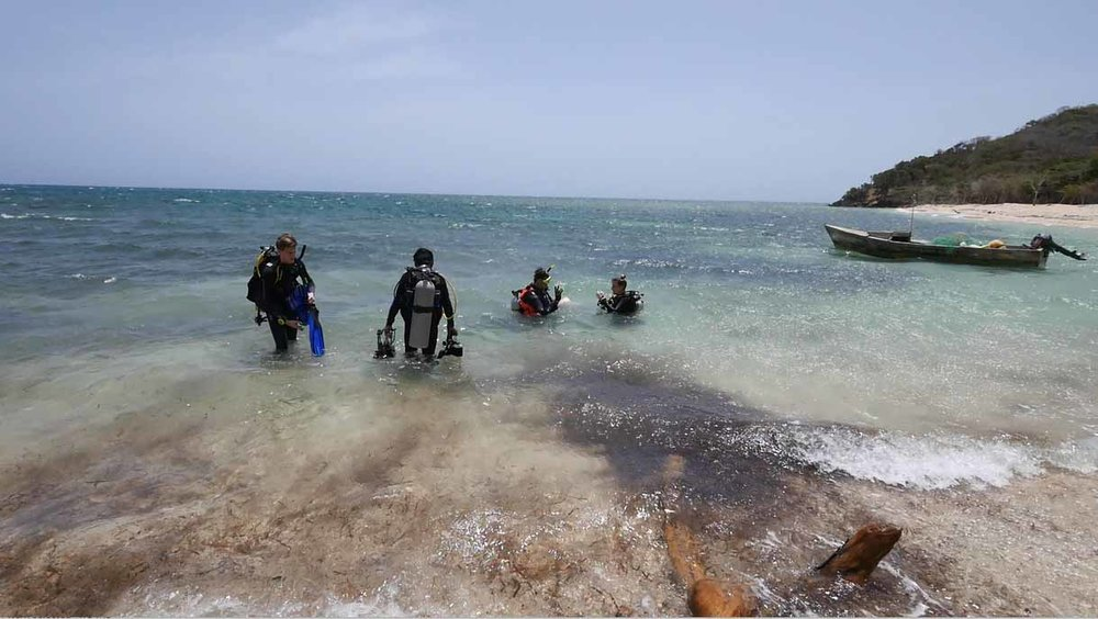 "The Team goes on their first dive to locate ""Le Dragon"" in the shallows"