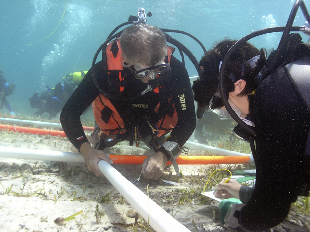 ADMAT Team members, Frank Betts and Jessica Berry working on   The Button Wreck