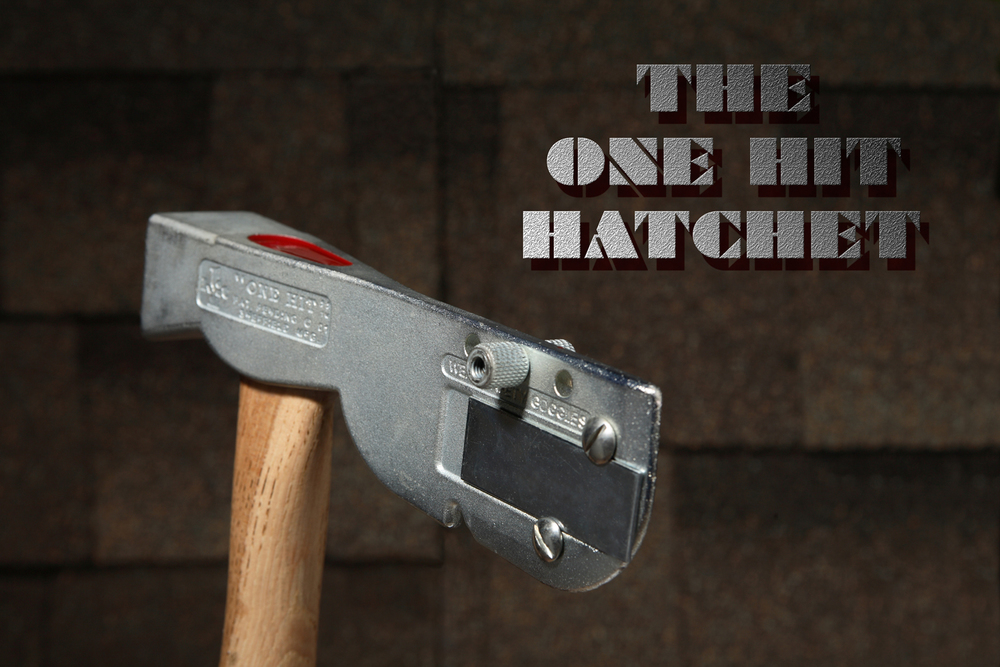 IMG_2253rtTEXT_One Hit Hatchet.jpg