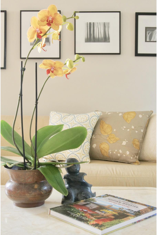 Living Room Before and After Leslie Price Interior Designer