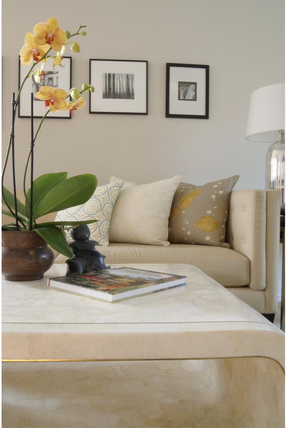 Interior Designer Lafayette CA Moraga CA Orinda CA