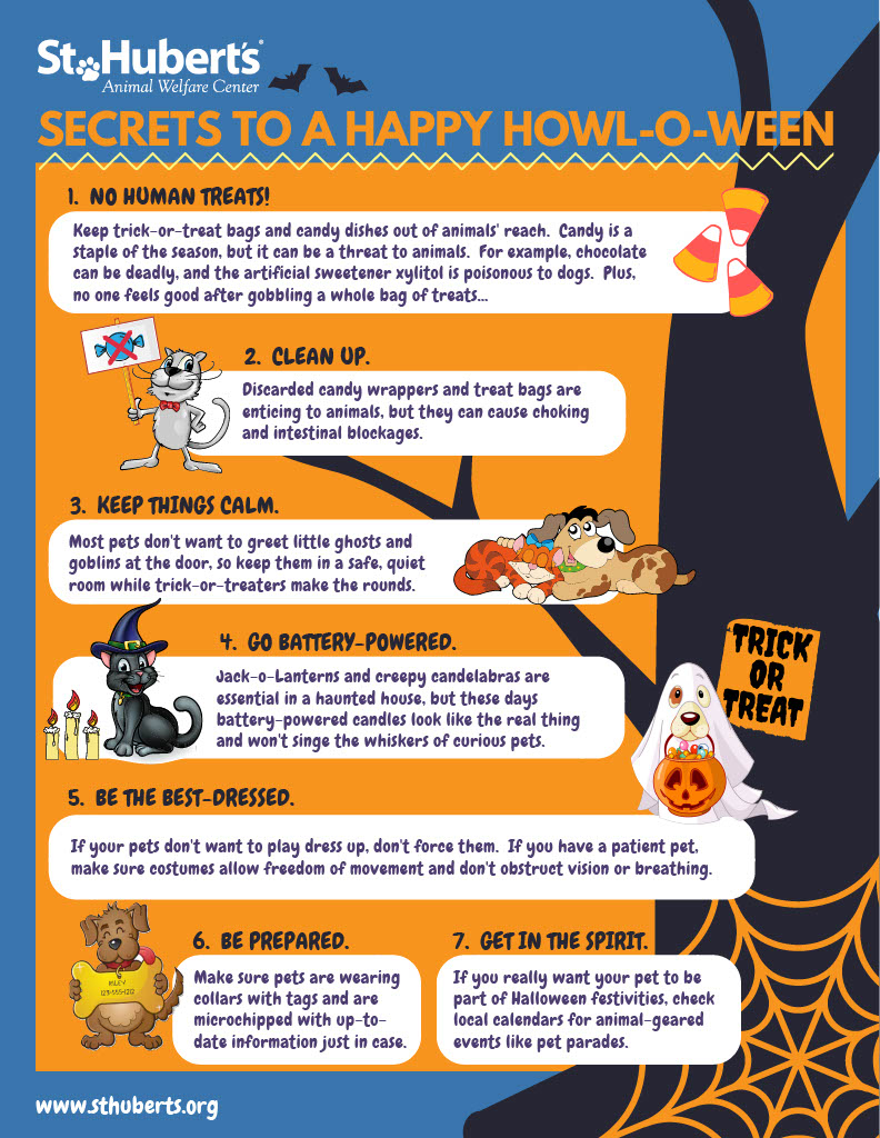 Halloween Tips Flyer Oct 20181024_1.jpg