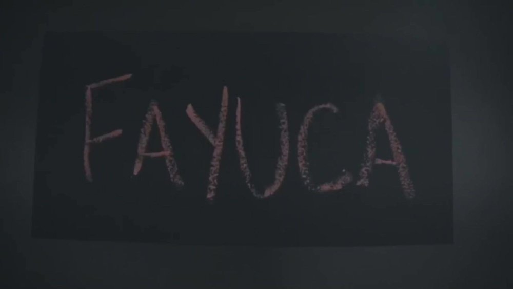 fayuca-live-helio-basin.jpg