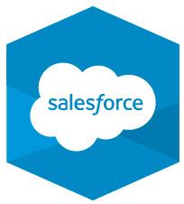 Salesforce.com Backup