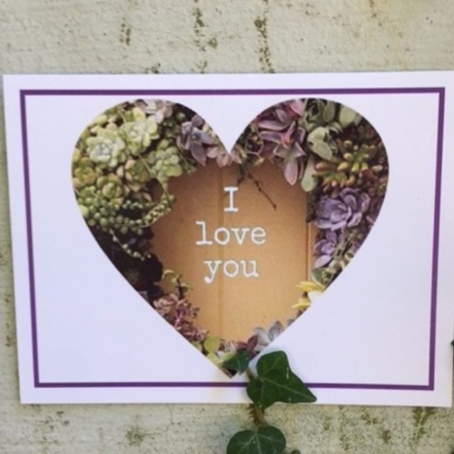 Write your perfect sentiment #love #hearts #write #relationships #succulents #gifts #bestfriend #heart #ecofriendly #lovers #friends