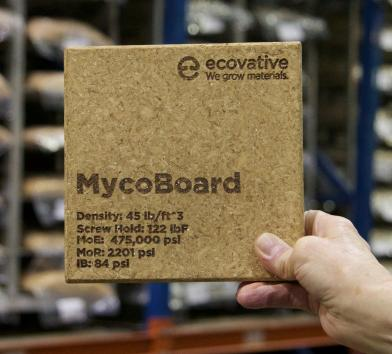 MycoBoard