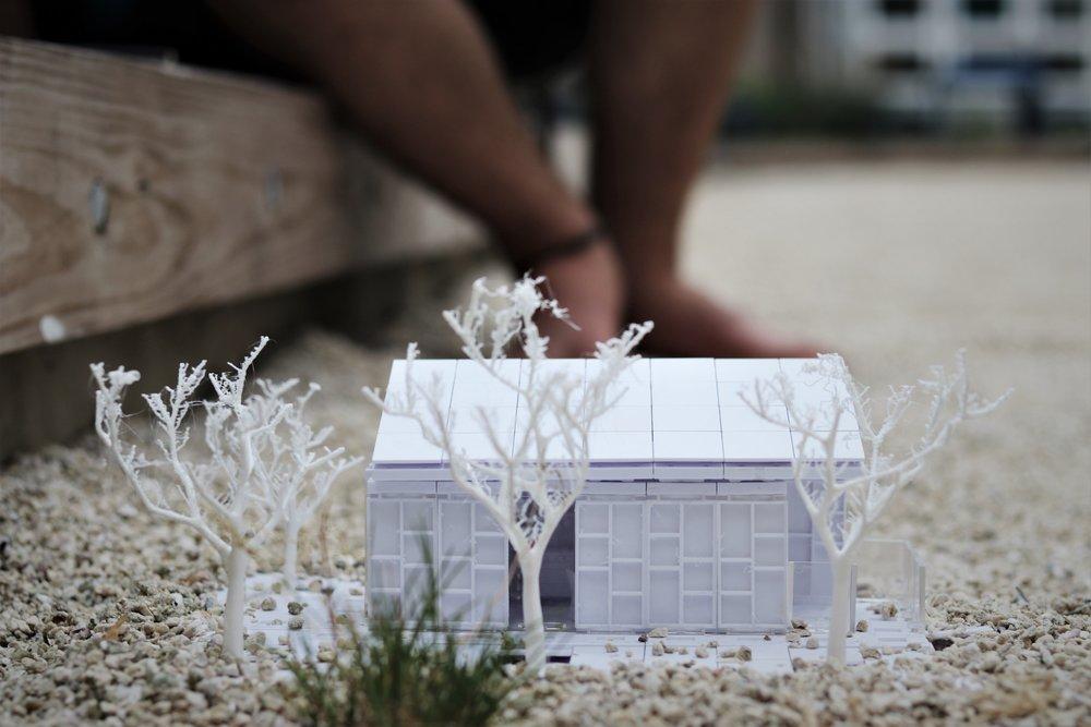 Snowdrop Prototype House V3 - 2018