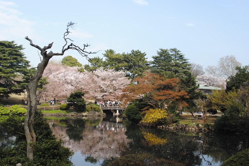 SMELL: Shinjuku Gardens in Japan