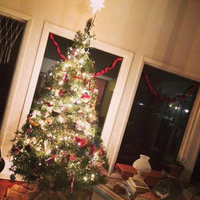 Our #christmastree2015 Merry Christmas!!!!