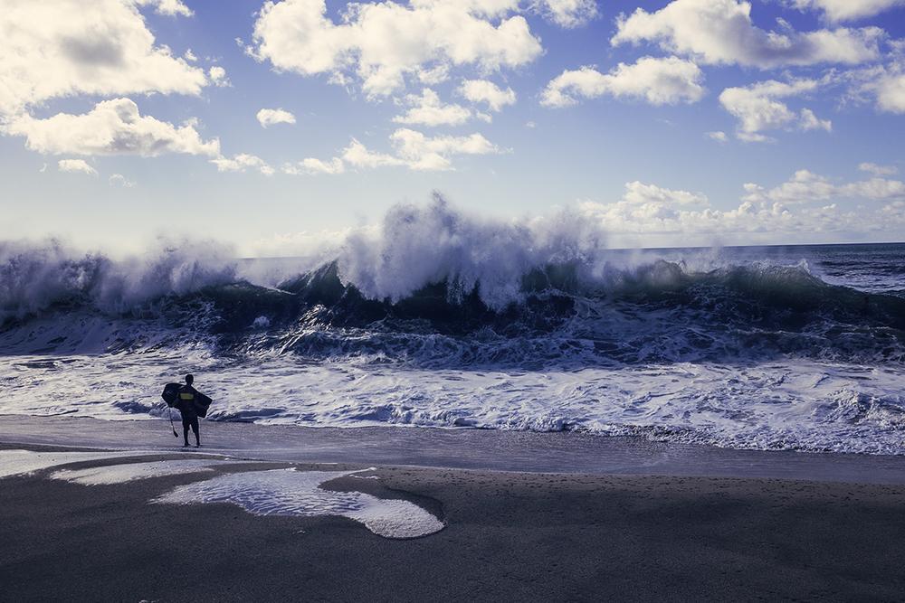 Giant Shore Gobbler