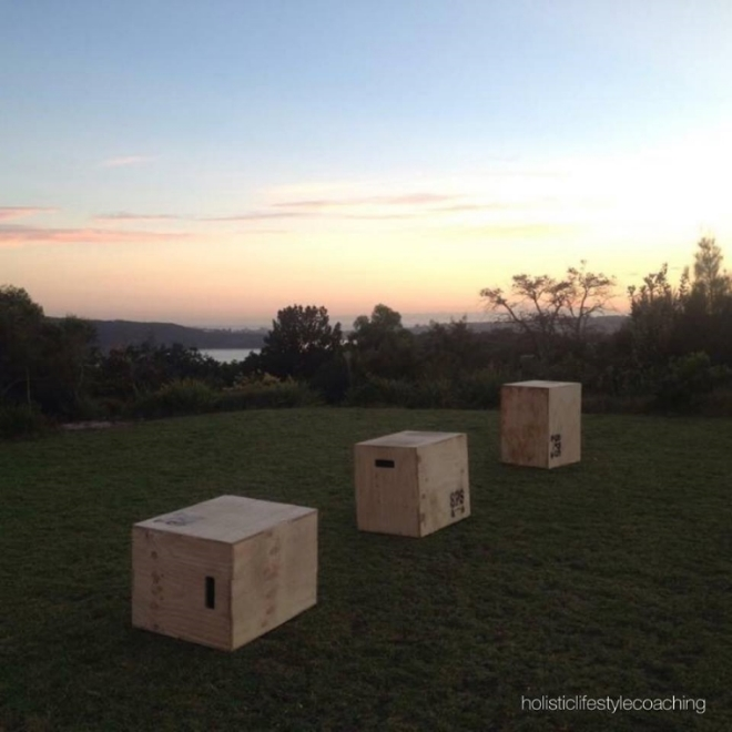 box jump boxes.jpg