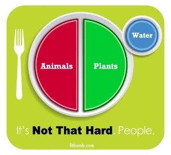 meal portion sheet.jpg