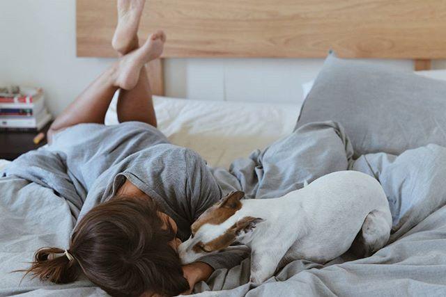 Monday morning dog kisses.  Before she realises it's still cold, and buries herself back under the doona.  #mondaymorning #lifeofpele #italiangreyhound #italiangreyhoundsofinstagram #dogsarethebestpeople #dogkisses #vsco
