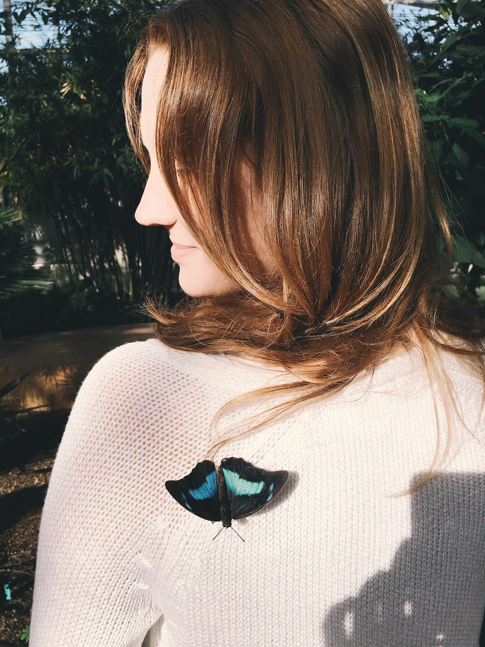 Bright butterfly on girl's shoulder