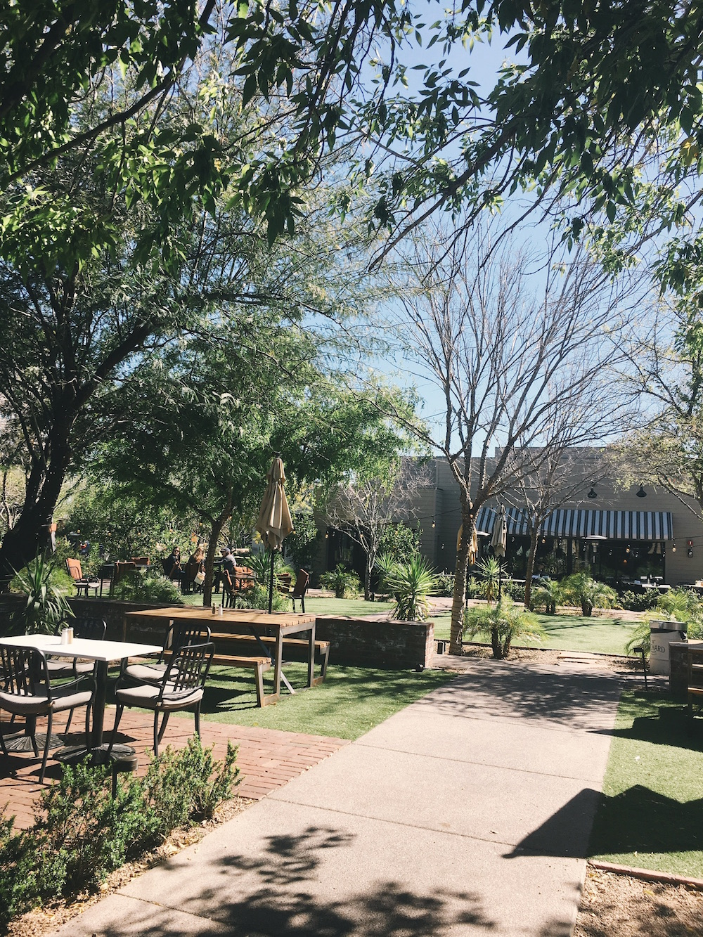 Picnic tables in grassy area in Arizona