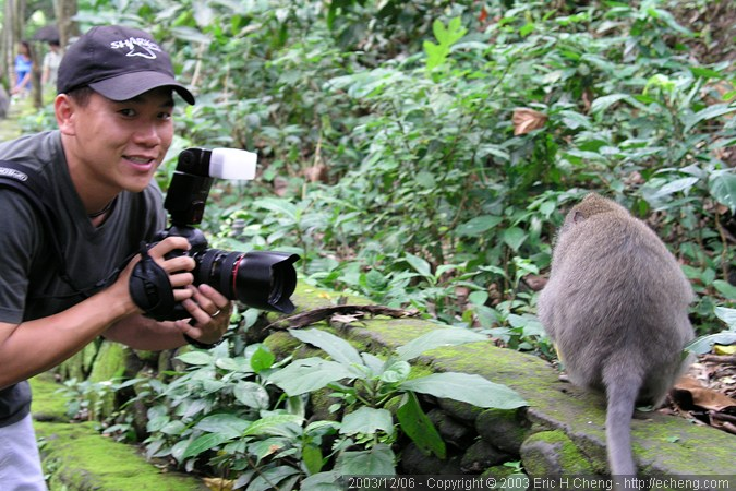 Photographing macaques in Ubud (photo: Dave Patchen)