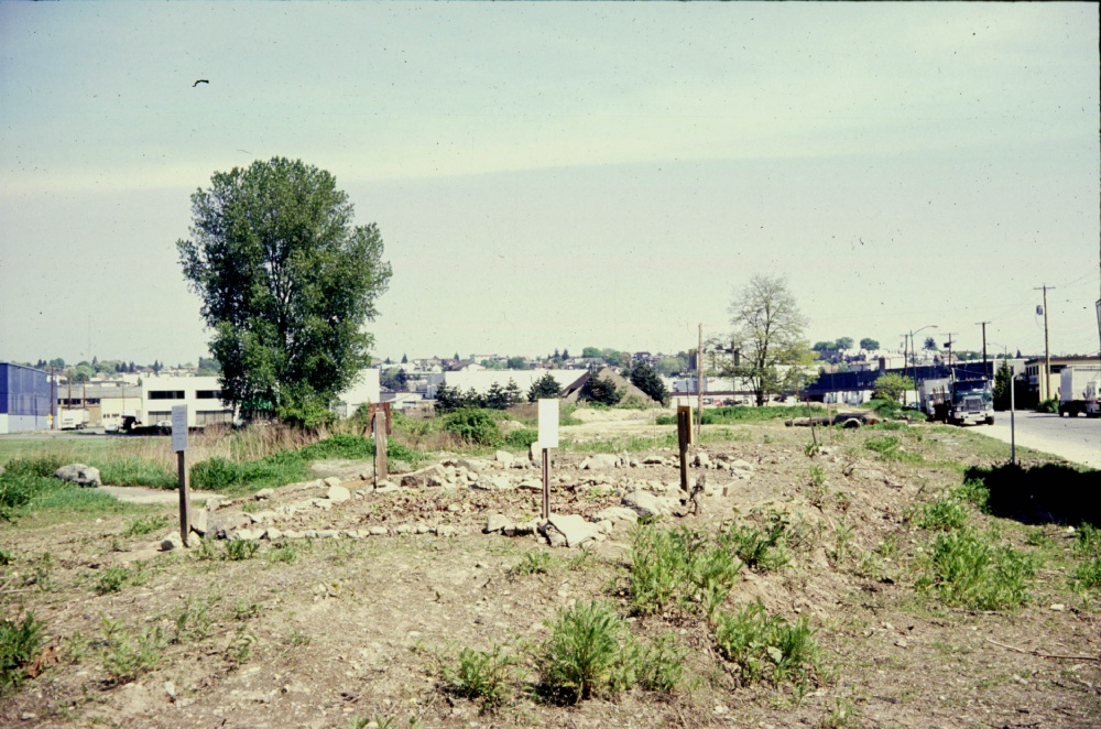 Cottonwood Gardens Test Plots, image courtesy of Oliver Kellhammer.
