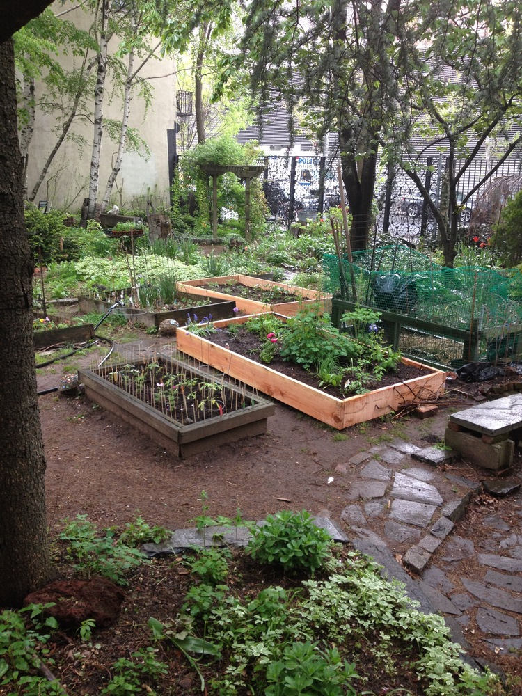 Green Oasis Community Garden, New York City, image courtesy of Green Oasis.
