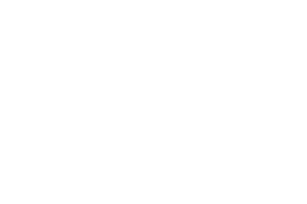 OFFICIAL SELECTION  - Beacon Independent Film Festival - 2017.png