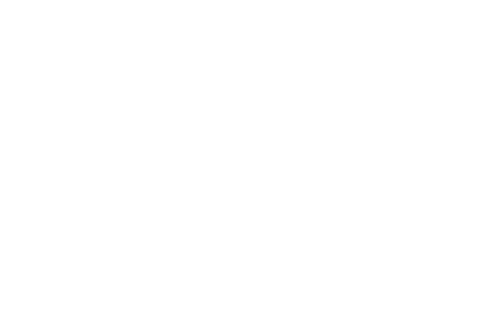 OFFICIAL SELECTION - SAN FRANCISCO DOCFEST - 2017_white.png