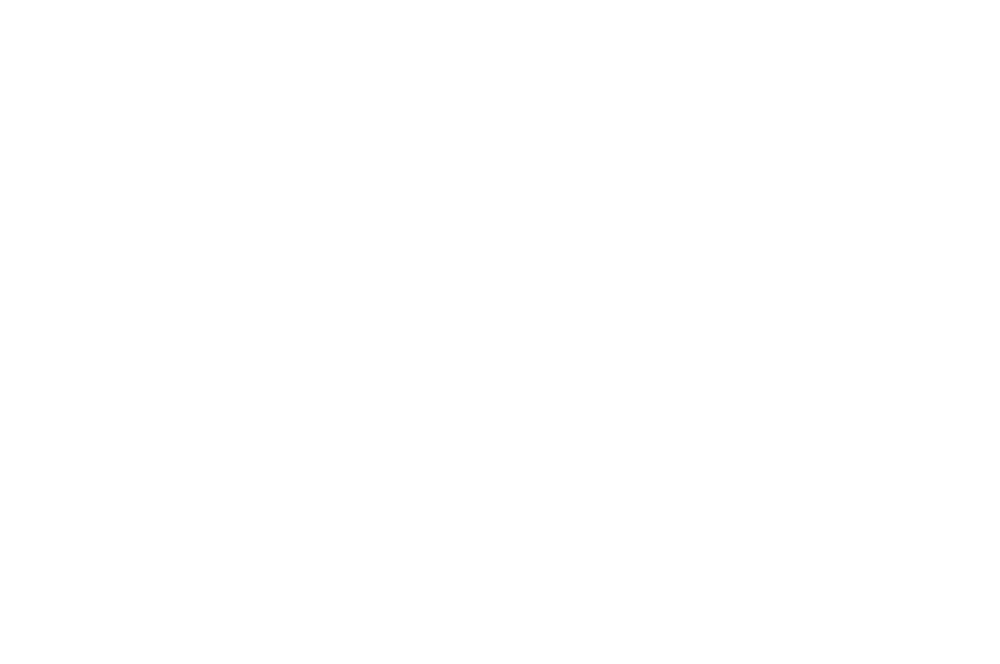 OFFICIAL SELECTION - Nashville Film Festival - 2017-2.png