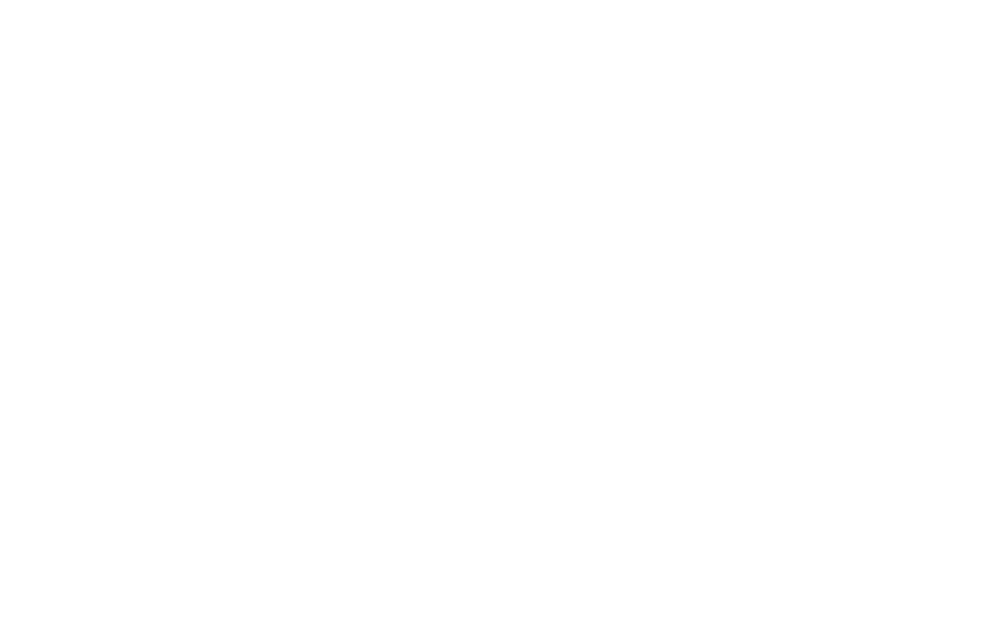 2017 BIG SKY Official Selection Laurels_white.png