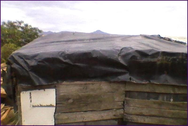 Dit was de hut waar Veronica met haar twee kids in woonde, een dak van vuilniszakken, zo lek als een mandje.