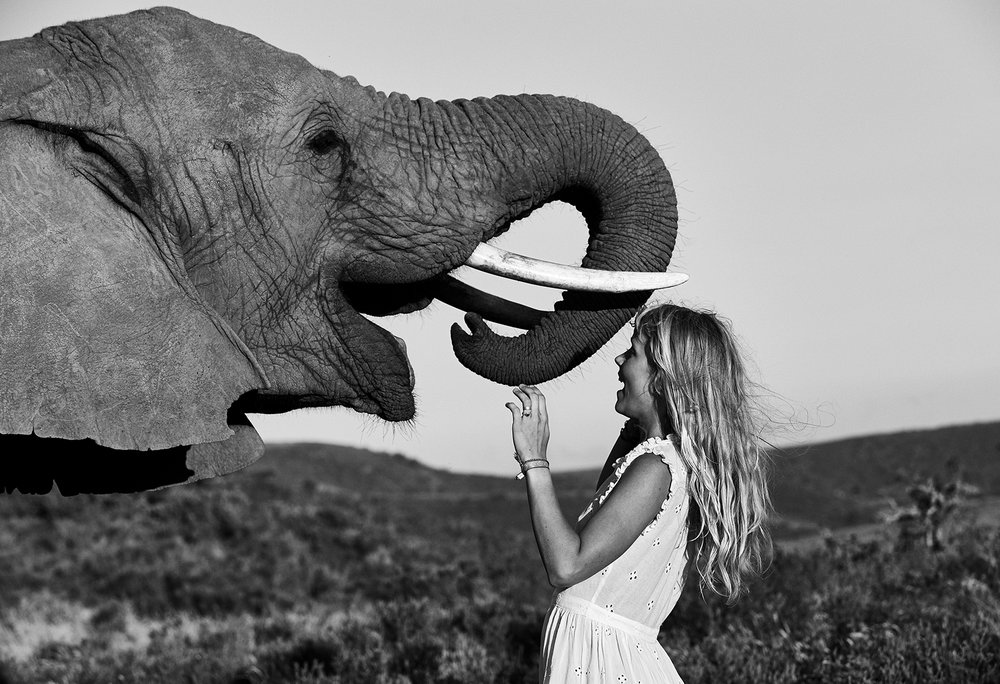 Alice Phoebe Lou Elephants Portrait