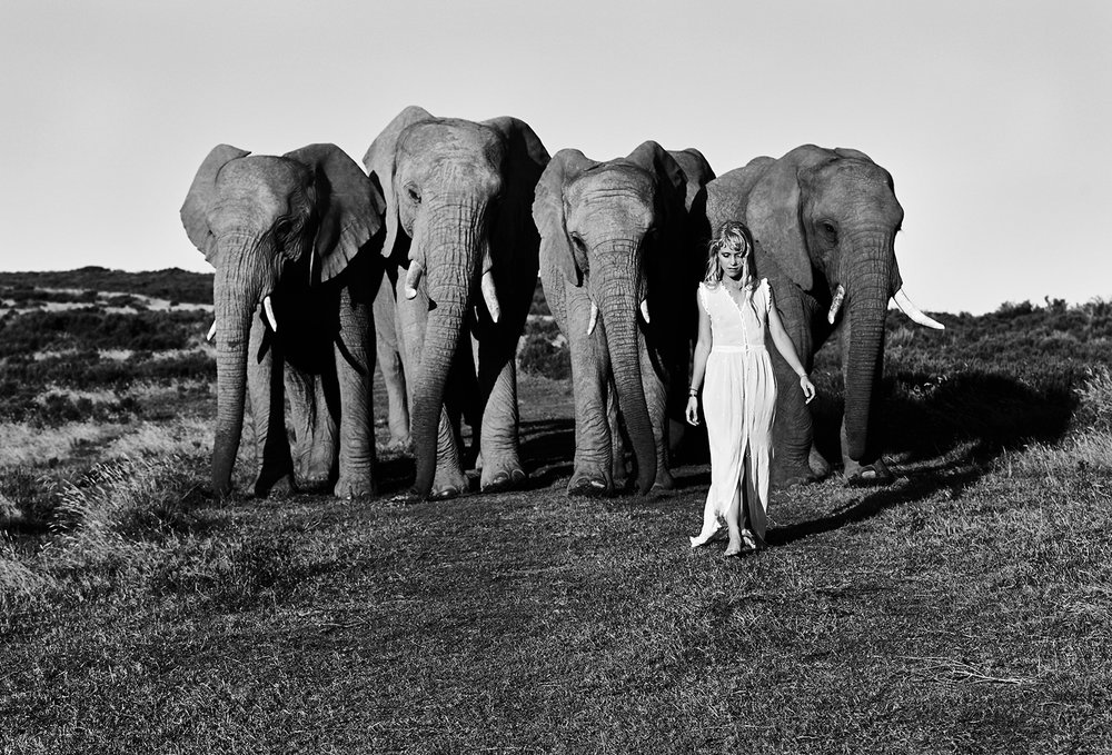 Alice Phoebe Lou Elephants