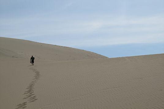 Peruvian Coastal Desert