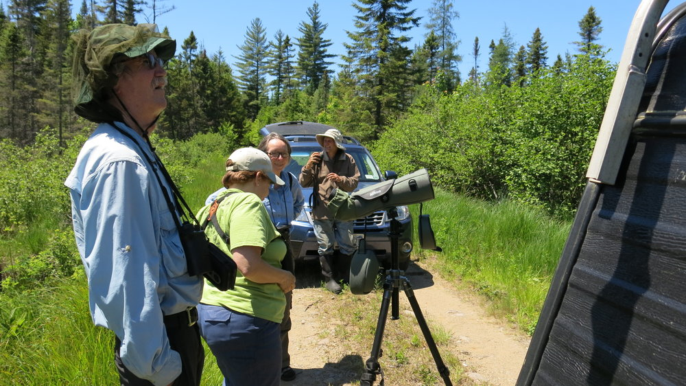 Members of Northern New york audubon visiting during the spring 2014 bird surveys.