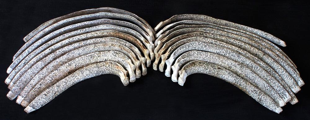 Bone Book  2015 Used Engine Oil on Bone 165 x 80 cm