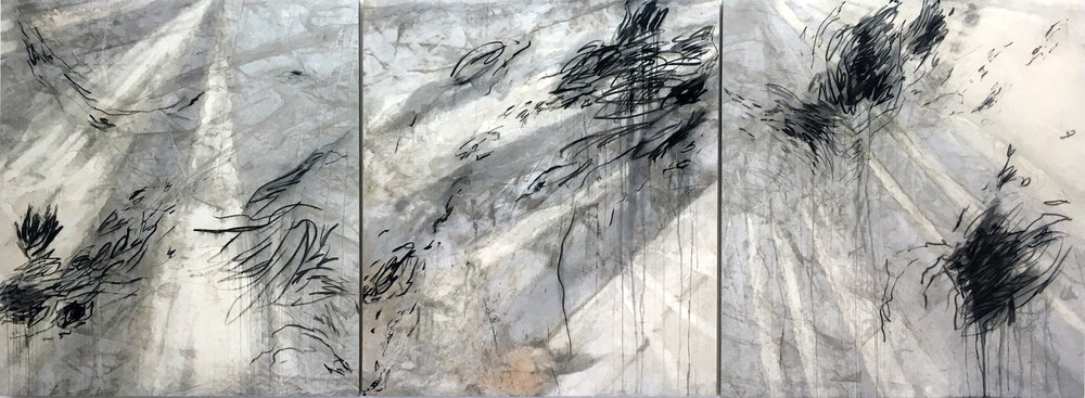 Deluge  2016 Rain and Charcoal on Canvas 150 x 405 cm