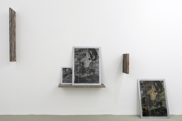 Interview: Sari Carel, Artforum.com