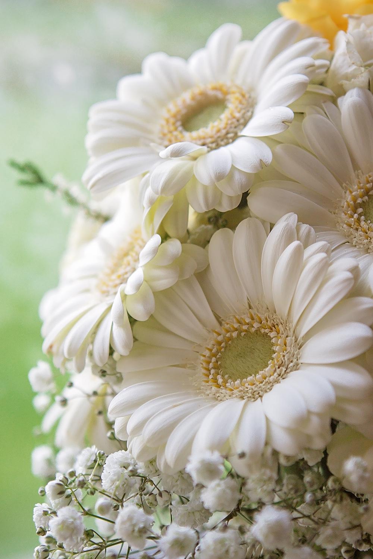 charnwood_weddings_barnsdale_lodge_rutland_dave_j65ane.JPG