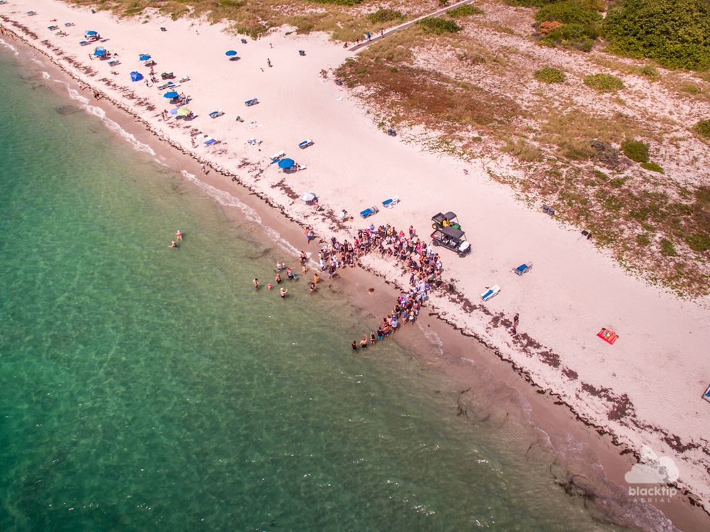 Key Biscayne sea turtle release aerial photography
