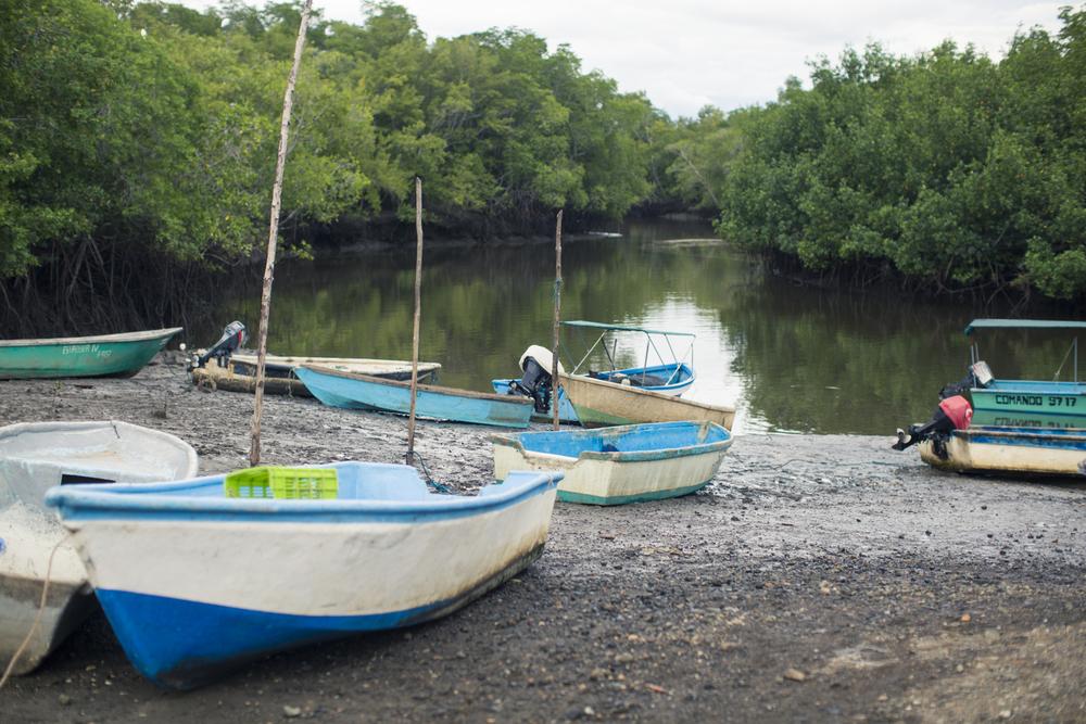 Hace 50 años el Golfo de Nicoya fue considerado una mina de oro, hoy, como resultado de su sobreexplotación, solo quedan los pescadores nativos de la zona tratando de sobrevivir con lo poco que ha quedado.